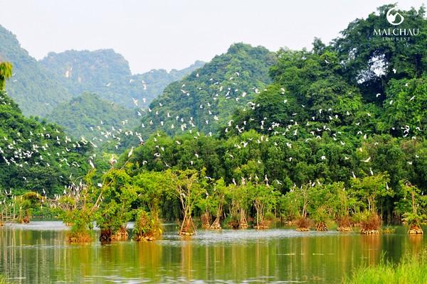 Tour-du-lich-Thung-Nham-Trang-An-Cuc-Phuong-3-ngay-2-dem