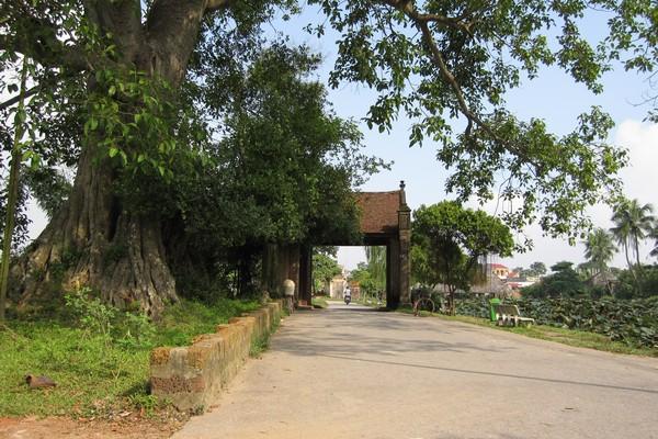 lang-co-duong-lam