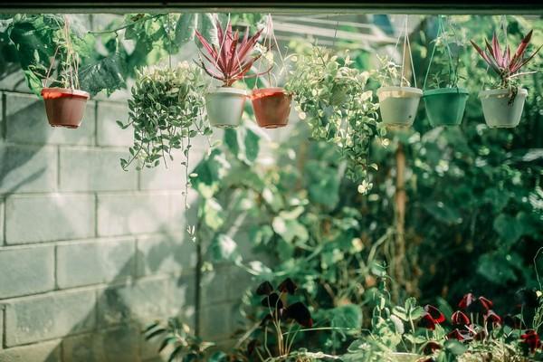 mosaic-garden-hue