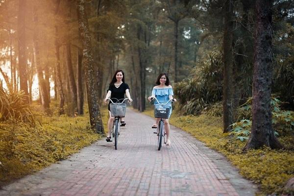 con_duong_tinh_yeu_tren_dao_co_to