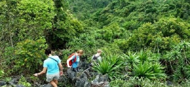 trekking-cat-ba