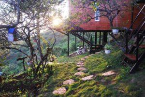 Moc-chau-tophill-home-stay-moc-chau