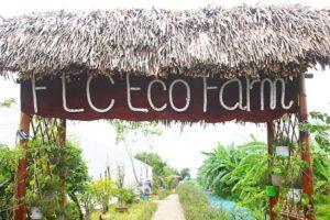 FLC-eco-farm-1