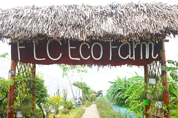FLC-eco-farm-1